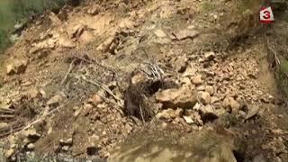 Река Чая преля, обявиха частично бедствено положение в три пловдивски общини