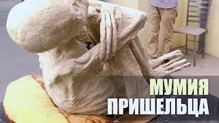 МУМИЯ ИНОПЛАНЕТЯНИНА найдена в Перу / Мумия пришельца в Перу / НОВОСТИ НЛО [ШОК и УЖАС] СЕНСАЦИЯ