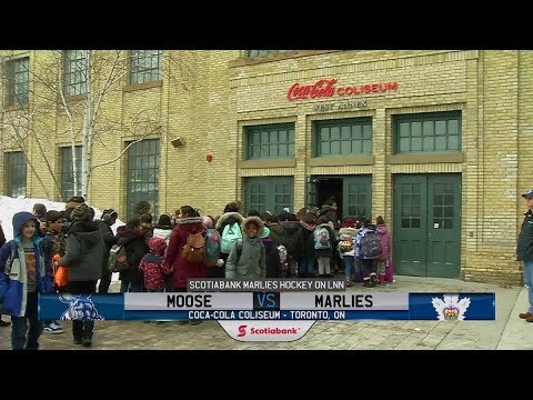 Moose vs. Marlies | Feb. 20, 2019
