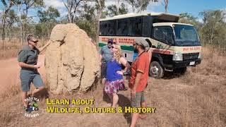 Join us for a day to the Rainforest or the Outback in a day and we will show you some amazing things.