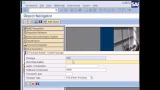 SAP ABAP: Your first ABAP program & Intro to ABAP