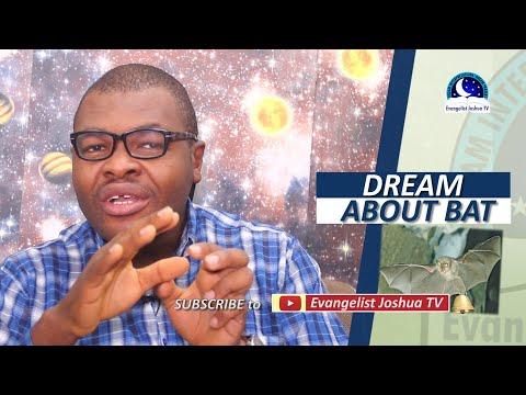 BIBLICAL MEANING OF BATS IN DREAM -  Evangelist Joshua Orekhie