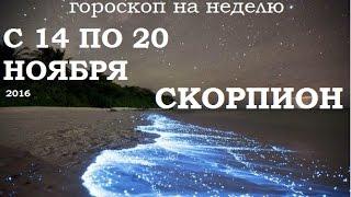 Скорпион гороскоп на неделю с 14 по 20 ноября  Сумасшедший 2017 на подходе!