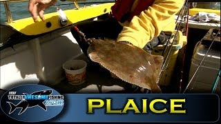 Plaice And Smooth Hound Off The Isle Of Wight - Series 2 - Episode 8