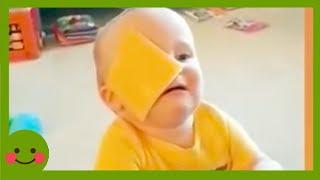 FUN AND FAILS - Los momentos más divertidos con los bebés más lindos fallan #2 #Woababy