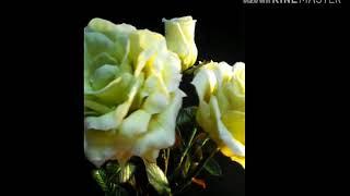 Осенние розы холодный фарфор.