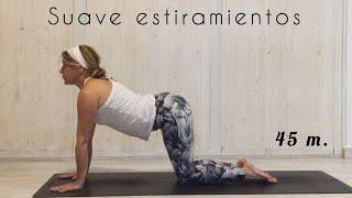 Yoga. clase suave. estiramientos