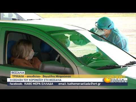 Η εξέλιξη του κορονοϊού στη Θεσσαλία | 30/11/2020 | ΕΡΤ