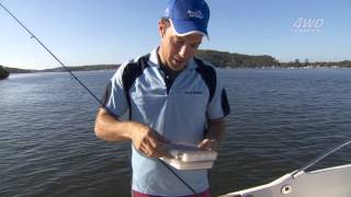 Bream fishing with lures [VIDEO]