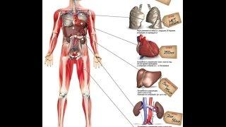 Handel ludzkimi organami
