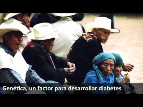 La insulina humana precio por ingeniería genética