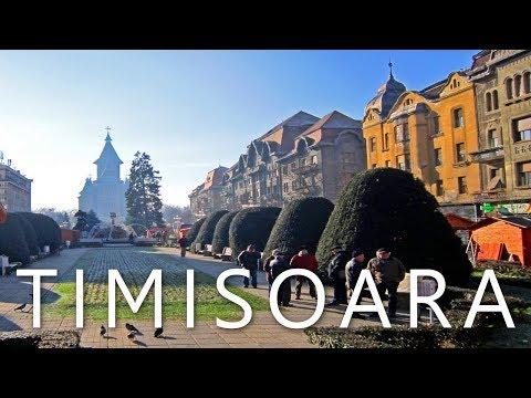 Femei singure din Timișoara care cauta barbati din Brașov