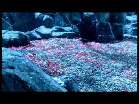 София Ротару - Вишневый сад
