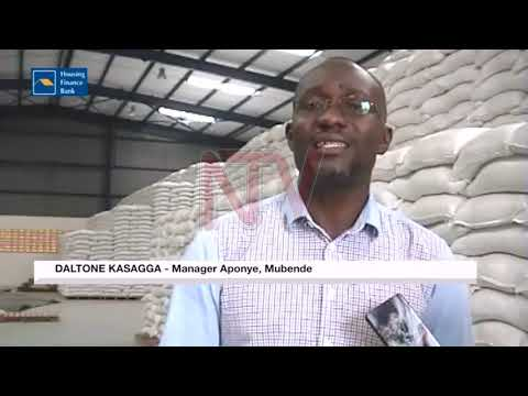Middlemen blamed for poor maize quality