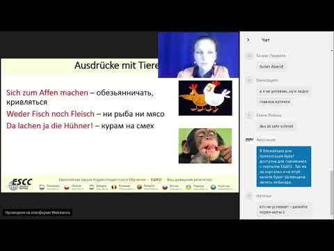 Видео-вебинар по немецкому языку