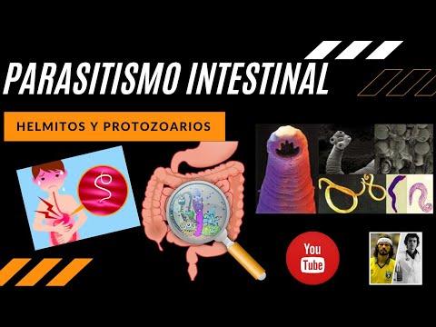 Parazitózis pinworms által