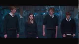 The Weasleys (Hey Brother - Avicii)