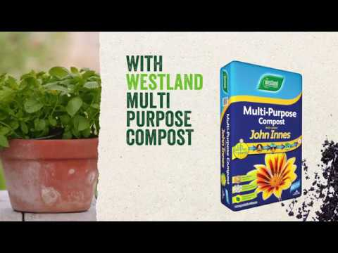 westland multi pupose compost with John Innes 10l Video