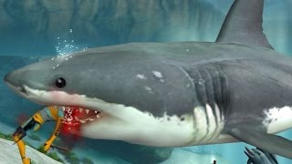 Jaws Unleashed Full Movie All Cutscenes