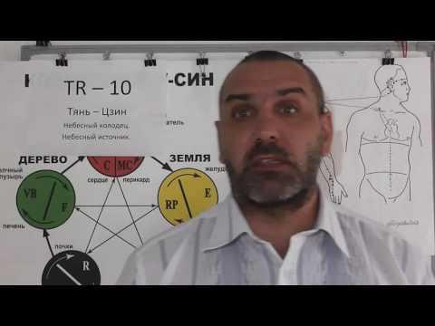 Устойчивость вирусов гепатитов в и с