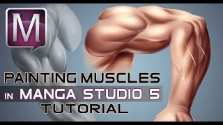 How to Paint Muscles in Manga Studio 5 EX - Digital Painting Tutorial - Narrated
