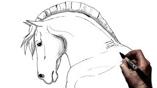 How To Draw A Horse | Step By Step | Side View