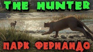 Охотник на Буйвола - Игра в кошки мышки в Парке Фернандо TheHunter Call of the Wild