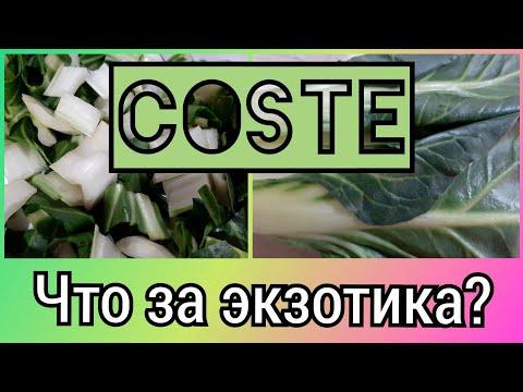 COSTE!!! Cos'e ' questa esotica? Erbivori italiani! Что это за экзотика Косте? Травоядные итальянцы!