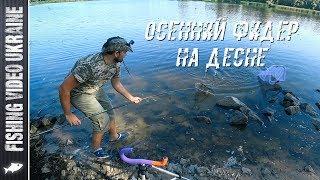 НА ФИДЕР МОЖНО ПОЙМАТЬ ЧТО УГОДНО   РЫБАЛКА НА ДЕСНЕ   FishingVideoUkraine