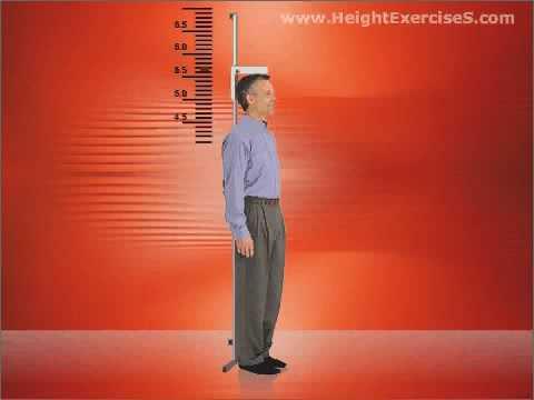 Como ocuparse correctamente el ohm de fitness si adelgazas