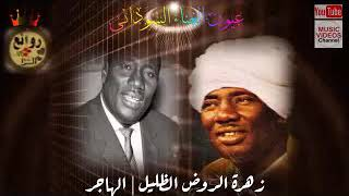 عبد العزيز محمد داؤد — زهرة الروض الظليل & الهاجر