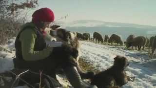 Winter Nomads (Hiver Nomade) - Trailer