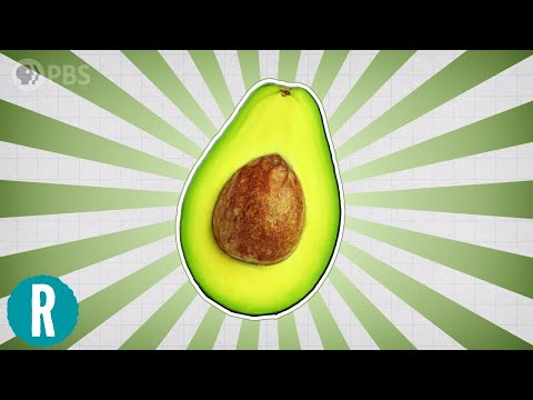 Why Are Avocados So Awesome?