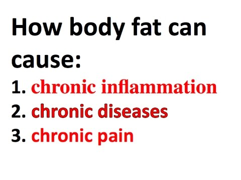 How body fat causes inflammation, chronic disease, and pain