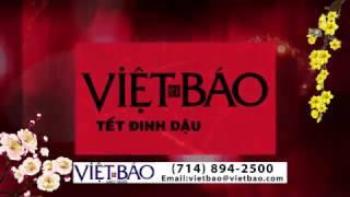VIET BAO XUAN 2017 1 03