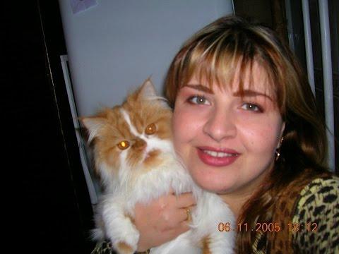 Болезнь сердца у кошки. Отек легких. Признаки и последствия.(Она умерла 10.01.2019)