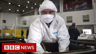 Coronavirus disease named Covid-19 - BBC News
