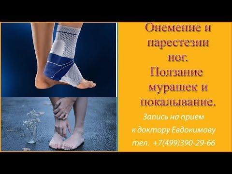 Болезнь суставов ног к какому врачу обратиться