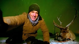 Reindeer Selfies With The Northern Lights! | Reindeer Family and Me | BBC Earth