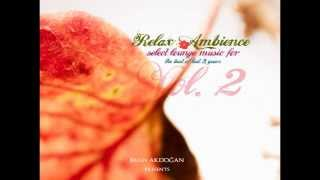 Relax Ambience Vol 2   ALMADRAVA La vie en Rose