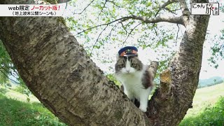 Vol.28「にゃん旅鉄道」パトロールだにゃん!