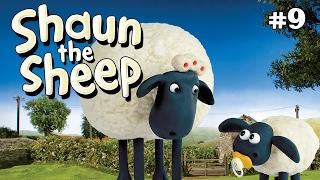 Download Video Shaun the Sheep -  Wash Day S1E8 (DVDRip XvID) MP3 3GP MP4
