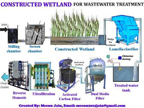 STP based on Constructed Wetland (Natural Wastewater treatment Technology)