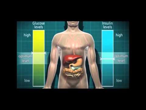 Brokkolisprößlinge bei Typ 2 Diabetes