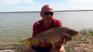 Рыбалка в перепелкино джанкойский район 2019
