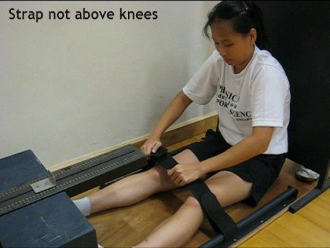 Sit and Reach Test Demonstration - Sports Videos