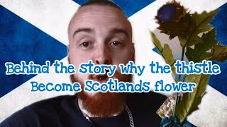 Behind the story of why the thistle became Scotlands flower