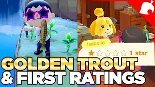 Stalk Market, Golden Trout, & First Island Rating in Animal Crossing New Horizons