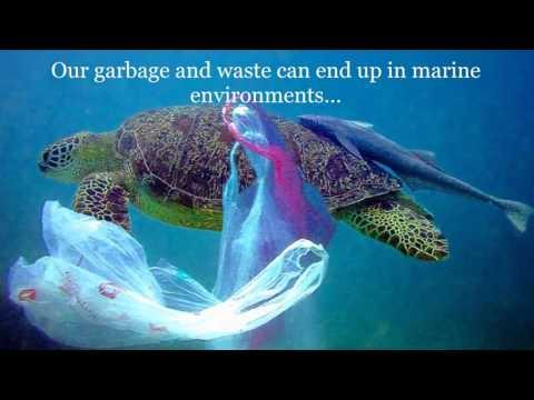 Проблемы окружающей среды на английском