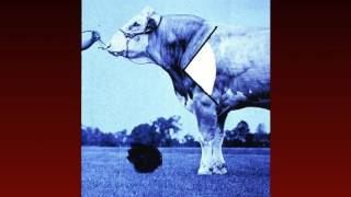 Lecture 10 Part 1- Visual Evaluation of Beef Cattle